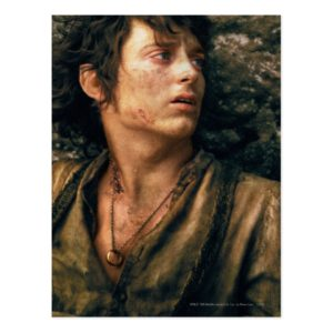 FRODO™ in Despair Postcard