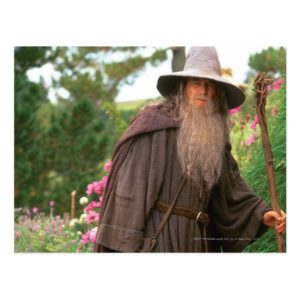 GANDALF™ with Hat Postcard