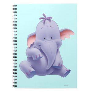 Lumpy 1 notebook