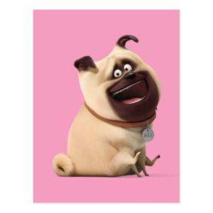 Secret Life of Pets - Mel Postcard