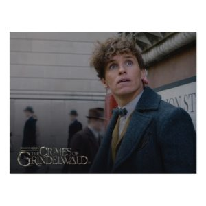 NEWT SCAMANDER™ In London Photo Postcard