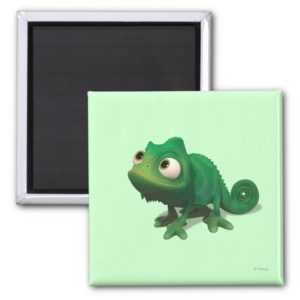 Pascal Magnet