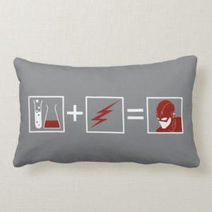 The Flash | Flash Equation Lumbar Pillow