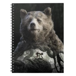 Baloo & Mowgli | The Jungle Book
