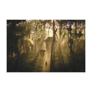 The Jungle Book Elephants Canvas Print