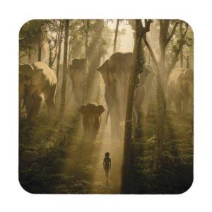 The Jungle Book Elephants Coaster