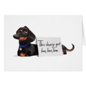 Secret Life of Pets | Buddy - Low, Low, Low