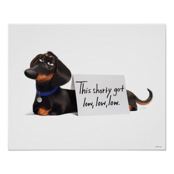 Secret Life of Pets   Buddy - Low, Low, Low Poster