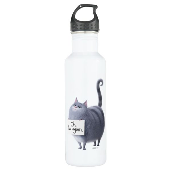 Secret Life of Pets   Chloe - You Again Stainless Steel Water Bottle