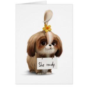 Secret Life of Pets | Daisy - She Ready