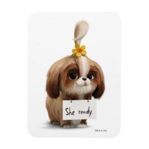 Secret Life of Pets | Daisy - She Ready Magnet