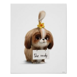 Secret Life of Pets | Daisy - She Ready Poster