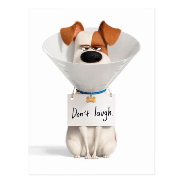 Secret Life of Pets   Max - Don't Laugh Postcard