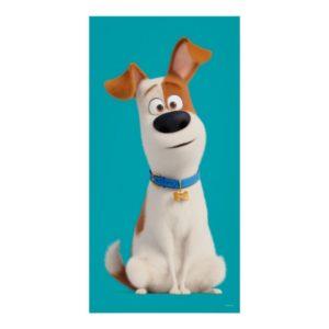 Secret Life of Pets - Max Poster
