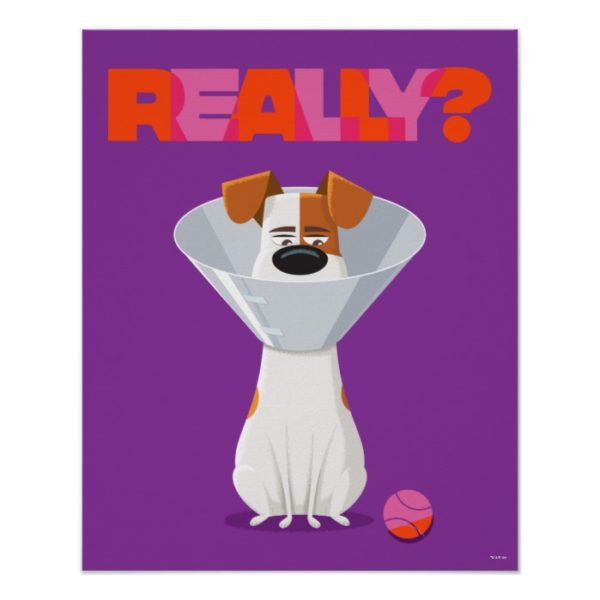 Secret Life of Pets - Max | Really? Poster