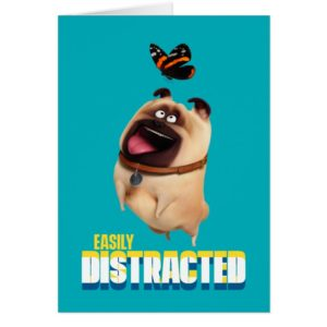 Secret Life of Pets - Mel | Easily Distracted