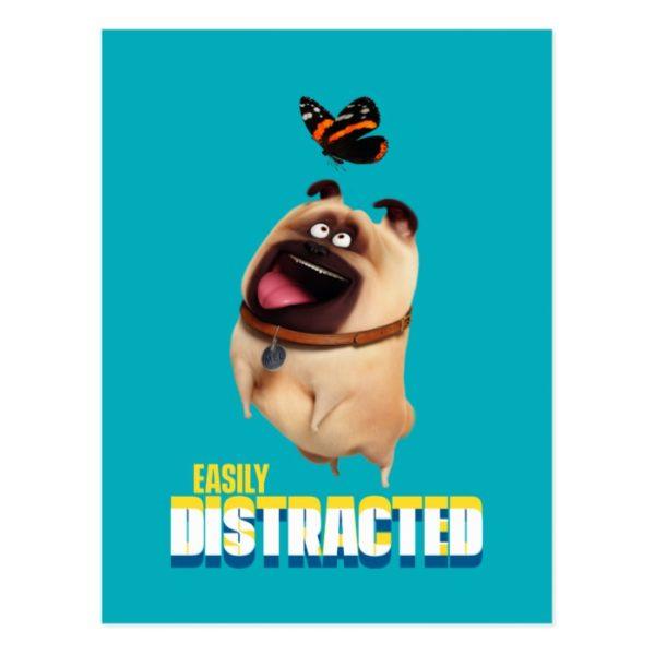 Secret Life of Pets - Mel   Easily Distracted Postcard