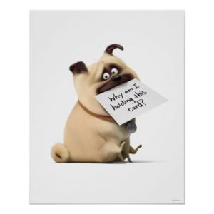 Secret Life of Pets | Mel - Holding Card Poster
